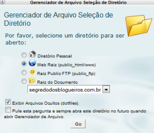 """3.Assim que você clicar no """"Gerenciador de Aquivo"""", abrirá uma caixa onde você só precisará clicar em """"GO""""."""